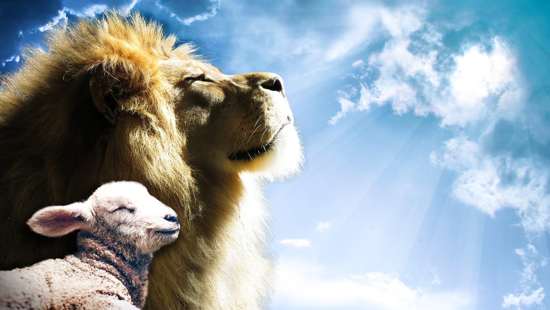 Handel's Messiah Lion and Lamb