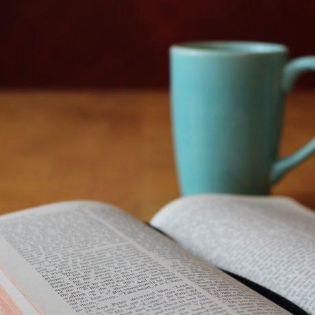 Study, Shun, and Sanctify