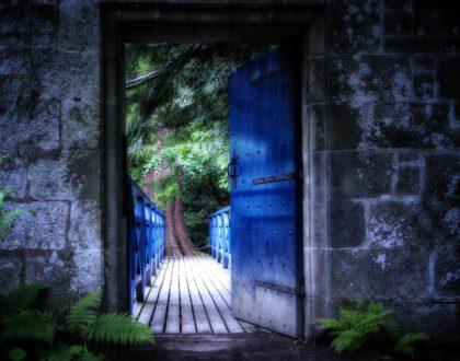 A Great Door