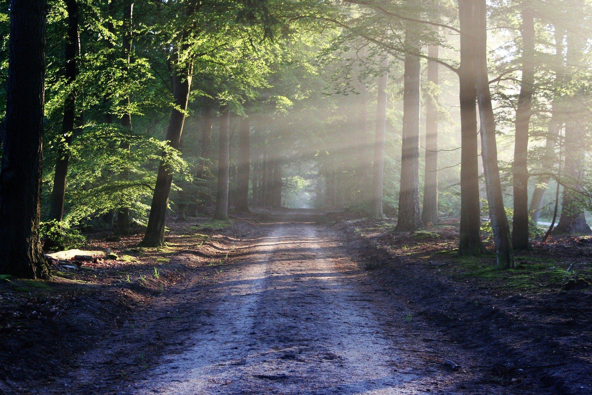 The Road to Faithfulness